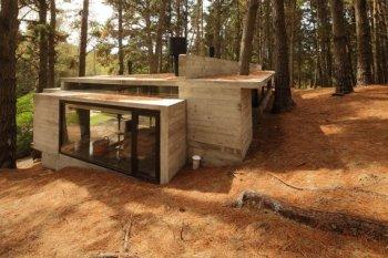 Три аргумента в пользу классной древесины